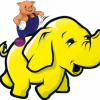 2LVW - big data tools pig hive hadoop