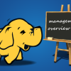 2LVW - big data hadoop management overview
